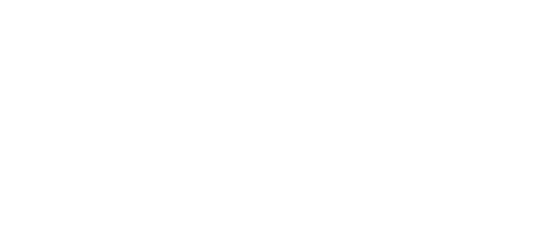 BrickRunners